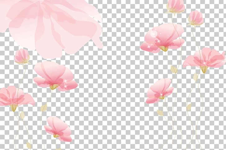 Wall PNG, Clipart, Blossom, Branch, Cherry Blossom, Color, Computer Wallpaper Free PNG Download