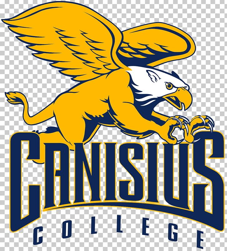 buy popular ad285 a537a Canisius College Canisius Golden Griffins Men's Basketball ...