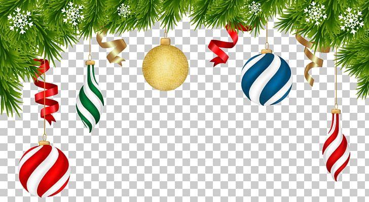 Christmas Decoration Christmas Ornament Png Clipart Branch Christmas Christmas Card Christmas Clipart Christmas Decoration Free Png