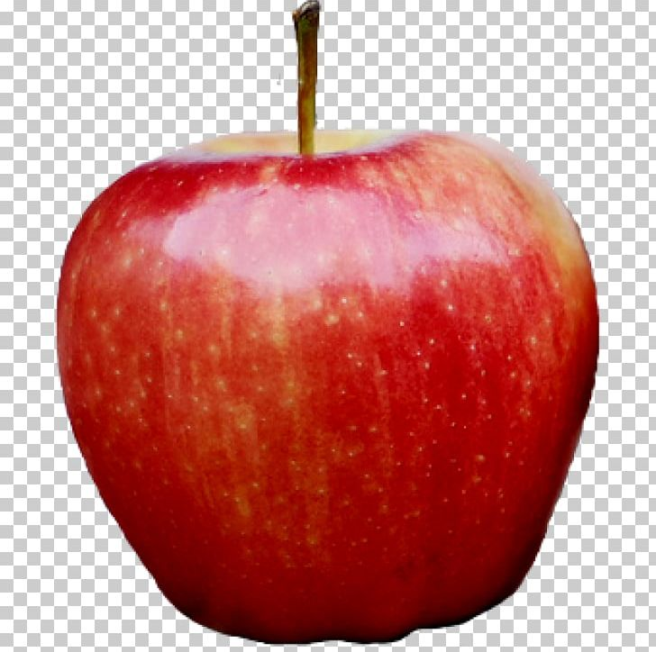 Apple IPhone PNG, Clipart, Accessory Fruit, Apple, Apple Photos, Apple Red, Computer Icons Free PNG Download