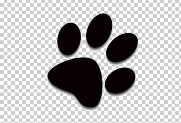 Cat Dog Kitten Paw PNG, Clipart, Adoption, Black, Black Cat, Cat, Cat Dog Free PNG Download