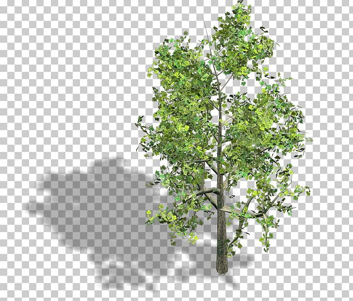 Tree Wood Axonometric Projection Isometric Projection Isometric Graphics In Video Games And Pixel Art PNG, Clipart, 2d Computer Graphics, Architectural Engineering, Art, Axonometric Projection, Branch Free PNG Download