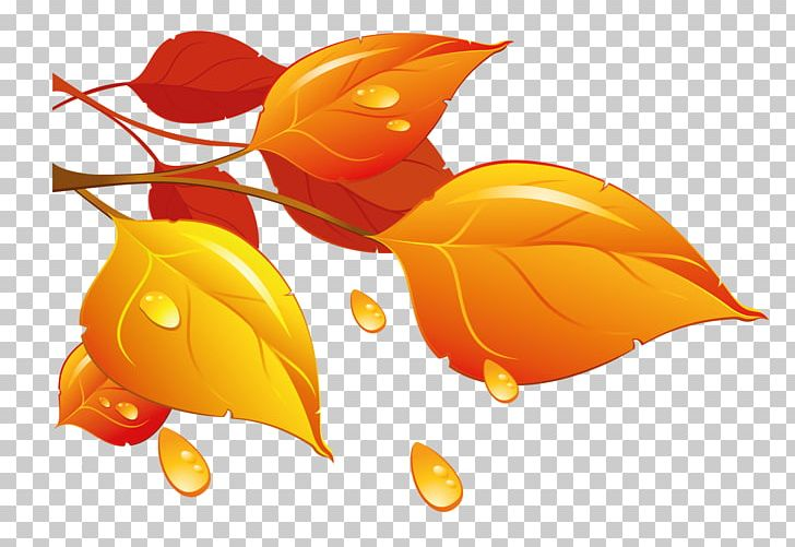 Autumn Leaf Color PNG, Clipart, Autumn, Autumn Leaf Color, Autumn Leaves, Blog, Color Free PNG Download