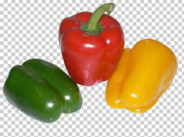 Bell Pepper Chili Pepper Black Pepper Pizza Vegetable PNG, Clipart, Bell Pepper, Bell Peppers And Chili Peppers, Black Pepper, Cayenne Pepper, Chili Pepper Free PNG Download