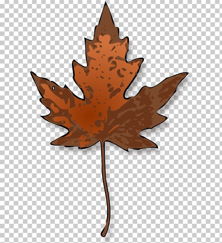 Autumn Leaf Color Maple Leaf PNG, Clipart, Autumn, Autumn Leaf Color, Branch, Bud, Drawing Free PNG Download