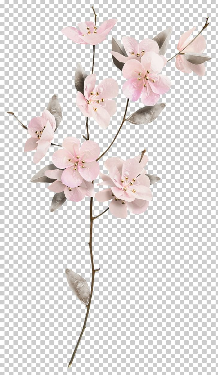 Cut Flowers Floral Design Floristry PNG, Clipart, Art, Blossom, Branch, Cherry Blossom, Cut Flowers Free PNG Download