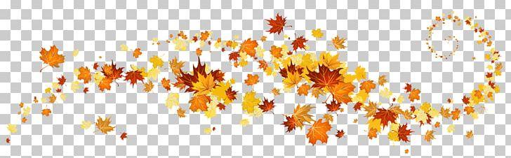 Autumn Leaf Color PNG, Clipart, Autumn, Autumn Leaf Color, Autumn Leaves, Blog, Branch Free PNG Download