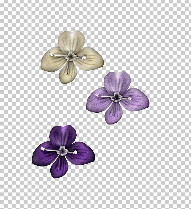 Violet Petal Purple Lossless Compression PNG, Clipart, Amethyst, Body Jewelry, Data Compression, Flower, Jewellery Free PNG Download