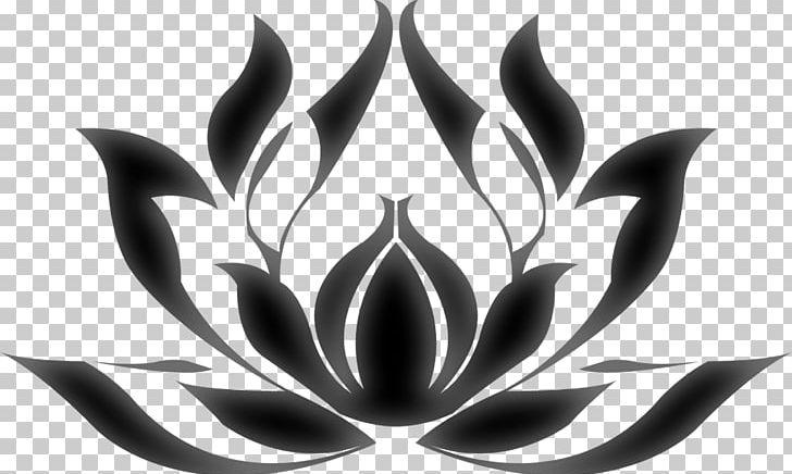 Nelumbo Nucifera Egyptian Lotus Nymphaea Lotus Plant Symbolism Png