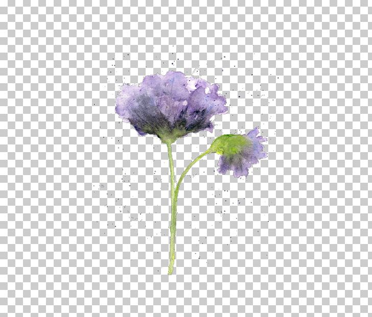 Watercolour Flowers Watercolor Painting Drawing PNG, Clipart, Abstract Art, Art, Art Museum, Beginners, Drawing Free PNG Download