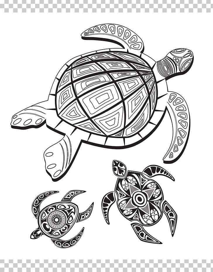 Tortoise Drawing Line Art Coloring Book Sketch PNG, Clipart ...