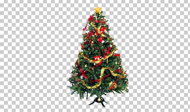 Christmas Tree Christmas Lights Christmas Ornament Pre-lit Tree PNG, Clipart, Advent, Chr, Christmas, Christmas Decoration, Christmas Frame Free PNG Download