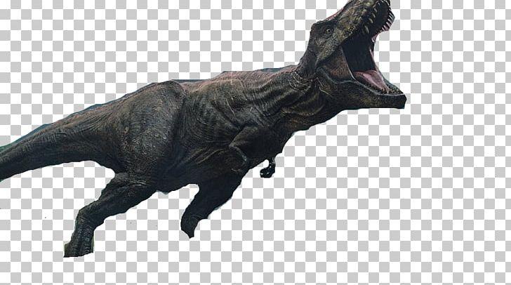 Tyrannosaurus YouTube Jurassic Park Indominus Rex Dinosaur