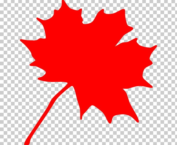 Canada Red Maple Maple Leaf Png Clipart Area Autumn Leaf
