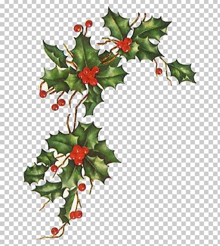 Christmas Love Happiness Wish Blessing Png Clipart Aquifoliales Biblical Magi Blessing Branch Christmas Free Png Download