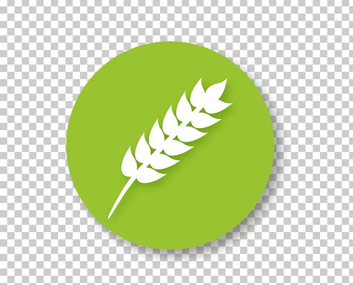 Gluten-free Diet Food Symbol PNG, Clipart, Allergen, Computer Icons, Diet, Food, Food Allergy Free PNG Download