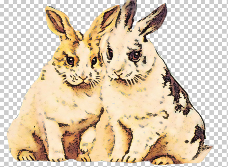 Rabbit Rabbits And Hares Hare Animal Figure Wood Rabbit PNG, Clipart, Animal Figure, Hare, Rabbit, Rabbits And Hares, Snout Free PNG Download