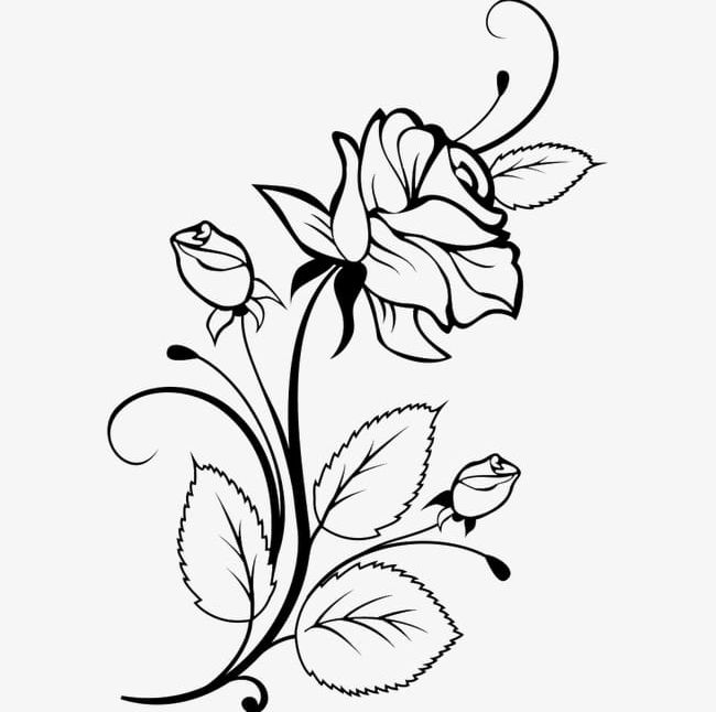 Black Flowers Sketch PNG, Clipart, Black, Black Clipart