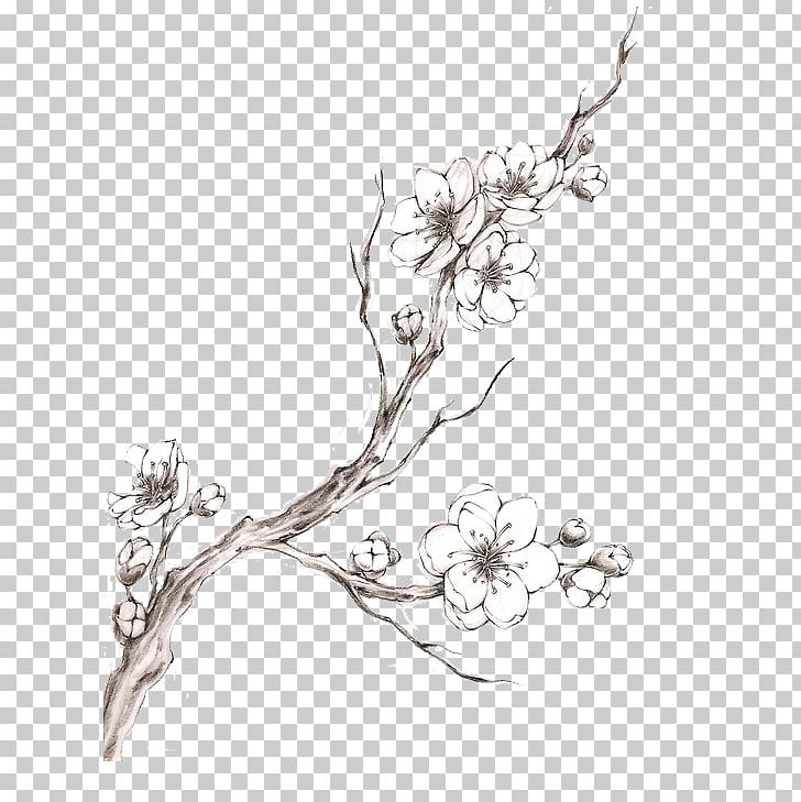 Cherry Blossom Tattoo Drawing Png Clipart Art Artwork Black And