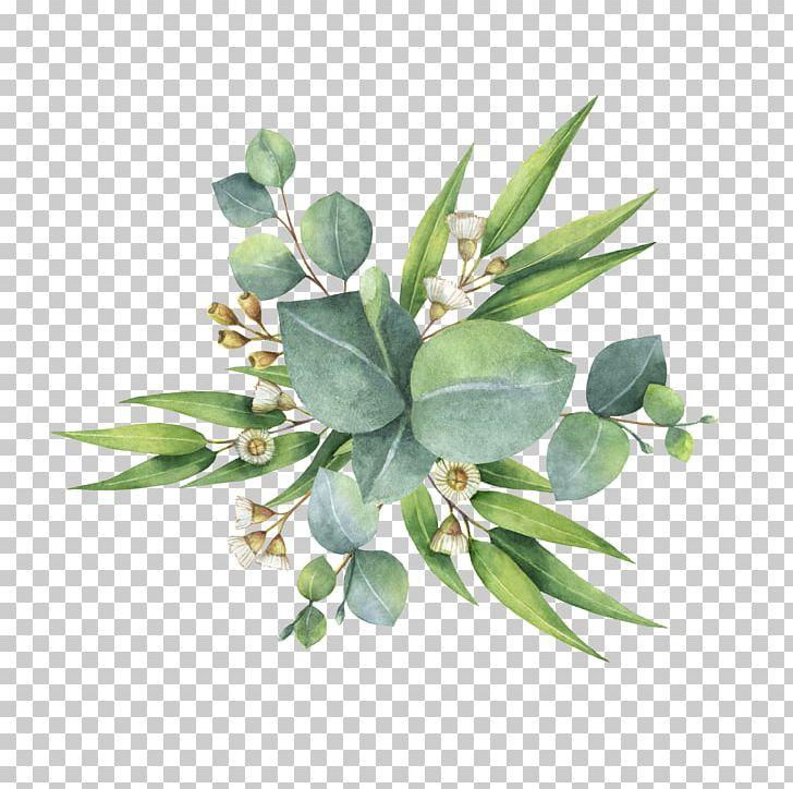 Watercolor Painting Flower Bouquet Leaf PNG, Clipart, Art, Canvas, Eucalyptus, Flower, Flower Bouquet Free PNG Download
