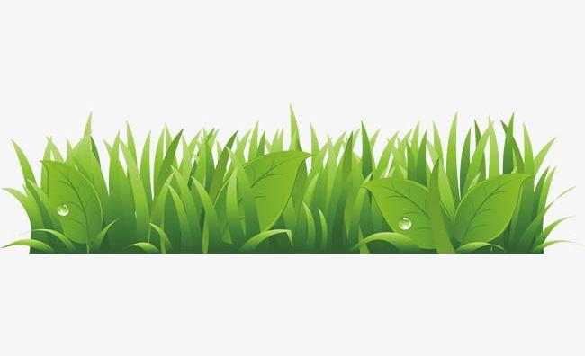 Cartoon Grass Background Png Clipart Background Vector Cartoon Vector Creative Grassland Grass Grass Free Png Download