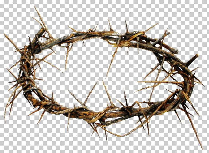 Crown Of Thorns Thorns PNG, Clipart, Branch, Christian Cross, Christianity, Crown, Crown Of Thorns Free PNG Download