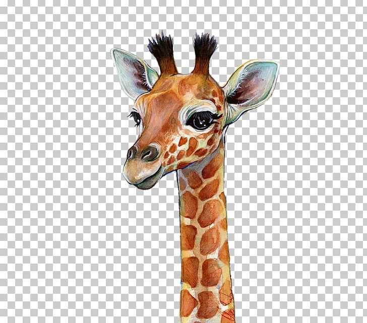 Watercolor Painting Giraffe Art Portrait PNG, Clipart, Animals, Art, Artist, Art Museum, Canvas Free PNG Download