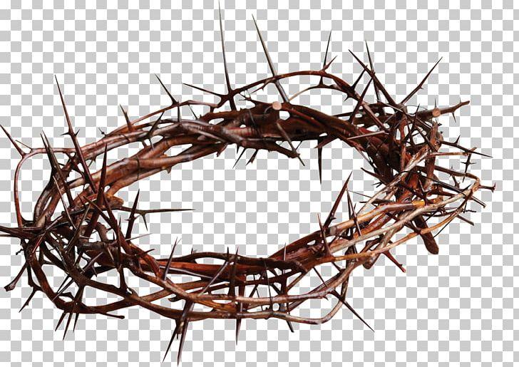 Crown Of Thorns Christian Cross Symbol Thorns PNG, Clipart, Art Metal, Branch, Christian Church, Christian Cross, Christian Cross Symbol Free PNG Download