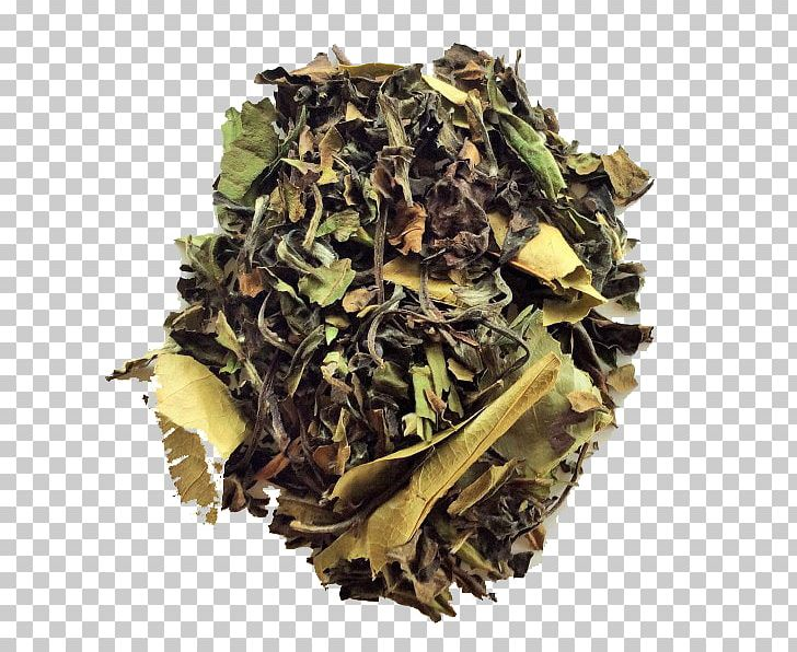 Hōjicha Nilgiri Tea White Tea Earl Grey Tea PNG, Clipart, Assam Tea, Bai Mudan, Bancha, Ceylon Tea, Da Hong Pao Free PNG Download