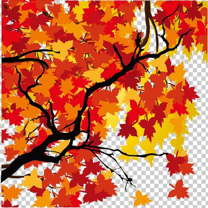 Maple Leaf Autumn PNG, Clipart, Art, Autumn, Autumn Leaf, Branch, Deciduous Free PNG Download