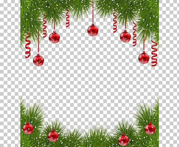 Christmas Ornament Christmas Tree Png Clipart Border Frame Borders And Frames Branch Christmas Card Christmas Decoration