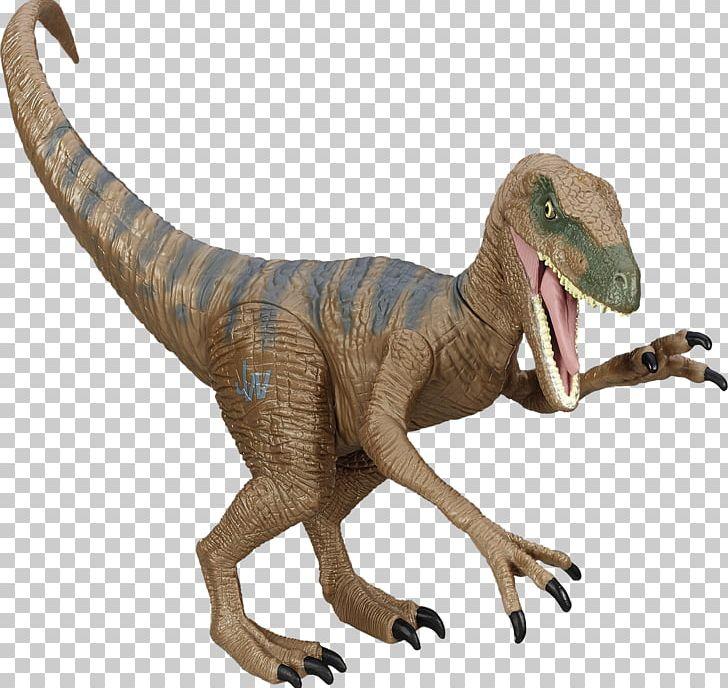 Velociraptor Lego Jurassic World Tyrannosaurus Dinosaur Pachycephalosaurus PNG, Clipart, Action Toy Figures, Animal Figure, Dinosaur, Extinction, Fantasy Free PNG Download