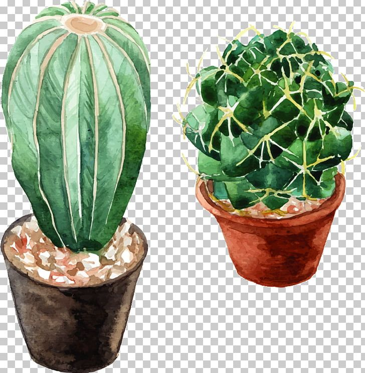 Watercolor: Flowers Cactaceae Watercolor Painting PNG, Clipart, Cactus, Cactus Vector, Happy Birthday Vector Images, Painting, Romantic Watercolor Flowers Free PNG Download