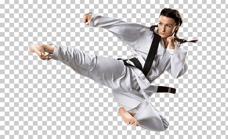 Taekwondo karate training  The 10 Best Martial Arts Classes