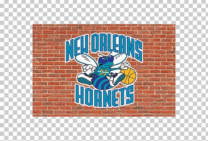 New Orleans Pelicans Charlotte Hornets 2010 11 Nba Season