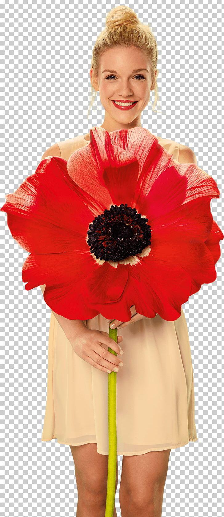 Cut Flowers Floral Design Floristry Flower Bouquet PNG, Clipart, Cocktail Dress, Costume, Cut Flowers, Dance Dress, Dress Free PNG Download