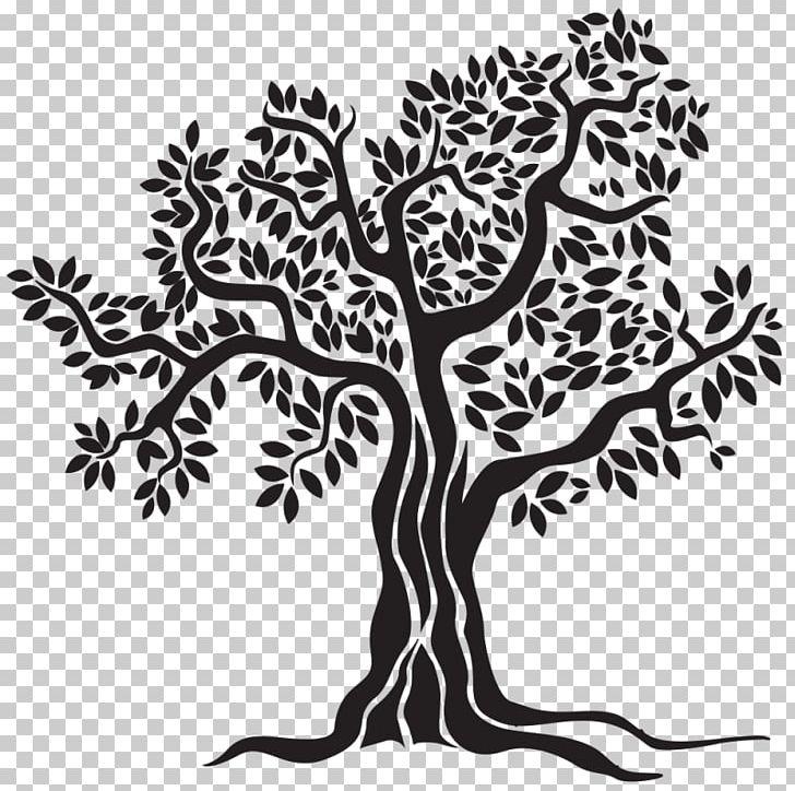 Olive Oil Food Sevillenca PNG, Clipart, Black And White, Branch, Cervognano, Deep Frying, Drawing Free PNG Download