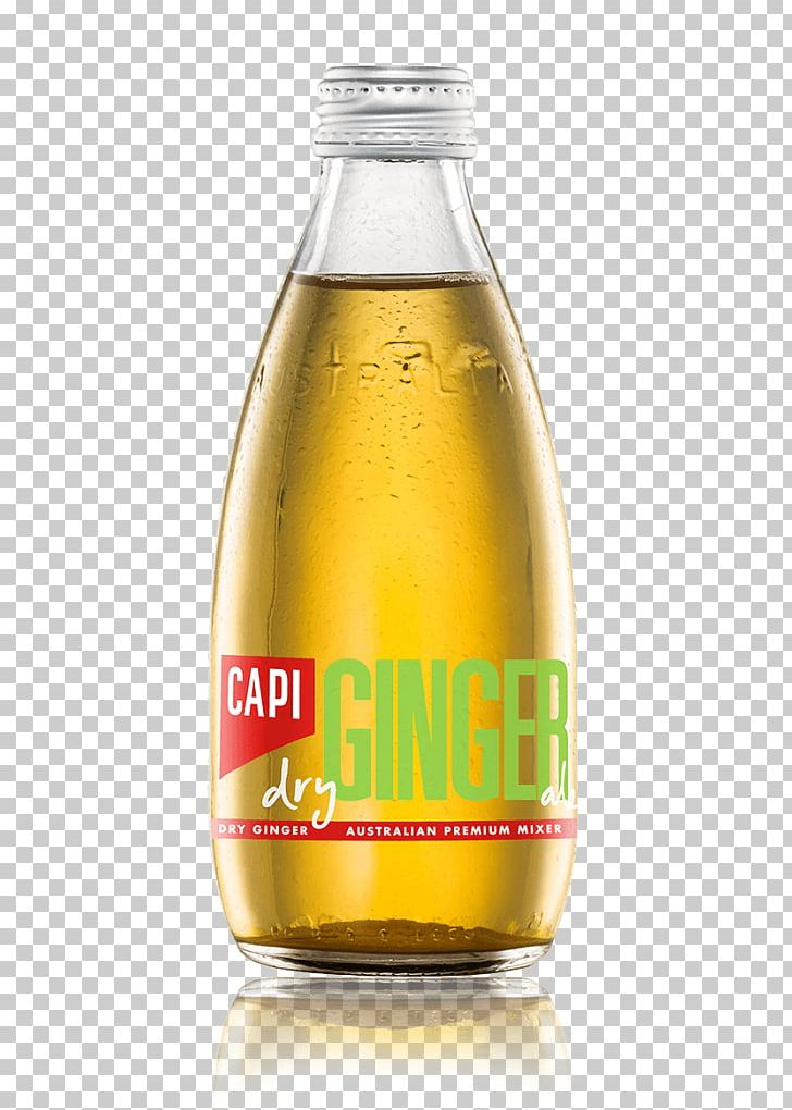 Fizzy Drinks Ginger Ale Tonic Water Ginger Beer Drink Mixer PNG, Clipart, Fizzy Drinks, Ginger Ale, Ginger Beer, Mixer, Tonic Water Free PNG Download