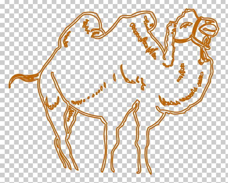 Camel Drawing Cartoon PNG, Clipart, Animals, Camel, Camel
