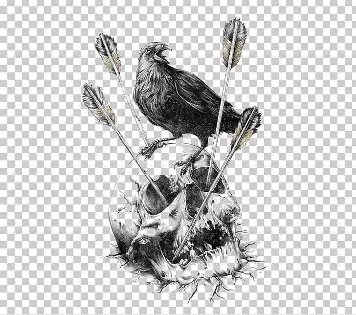 Calavera Carlsberg Fjord Human Skull Symbolism Illustration PNG