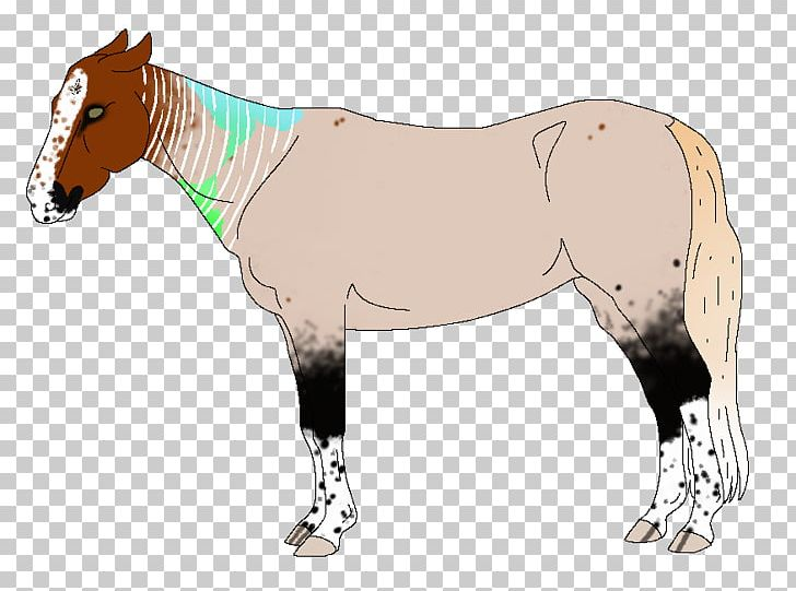 Foal Stallion Mare Mustang Colt PNG, Clipart,  Free PNG Download