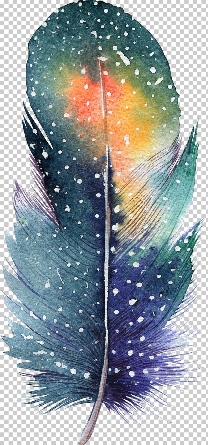 Feather Watercolor Painting Drawing Illustration PNG, Clipart, Animals, Art, Bohochic, Color, Decoration Free PNG Download