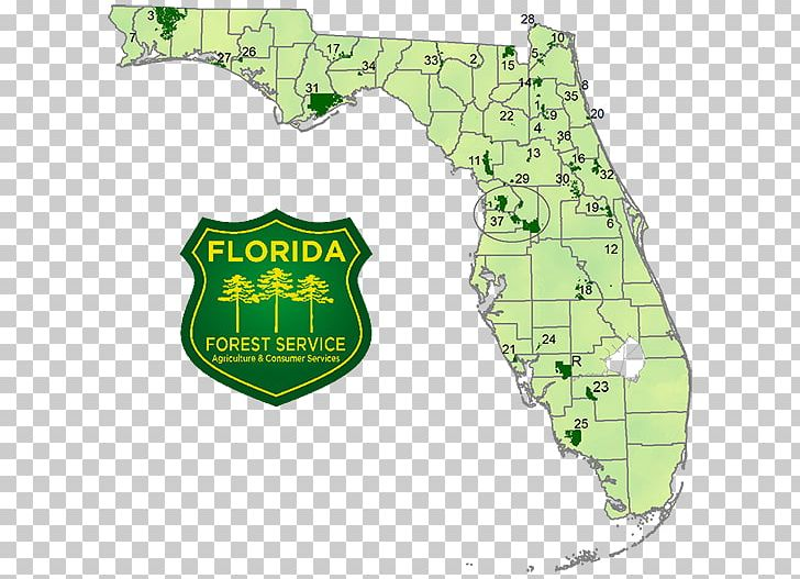 Florida National Scenic Trail United States Forest Service Map PNG