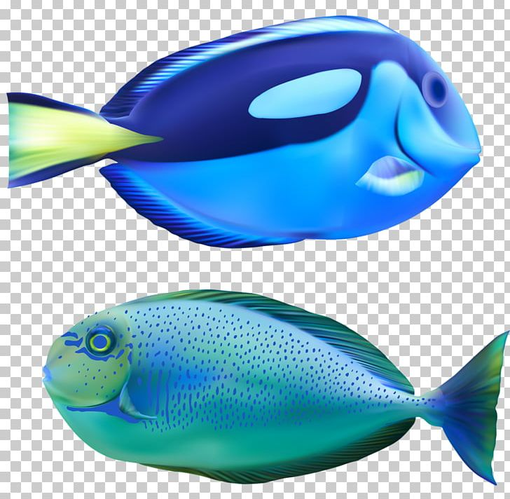 Deep Sea Fish Bony Fishes Marine Biology Deep Sea Creature PNG, Clipart, Animals, Aqua, Blue, Blue Fish, Bony Fishes Free PNG Download