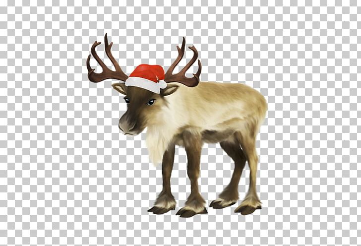 Santa Claus Reindeer Christmas PNG, Clipart,  Free PNG Download
