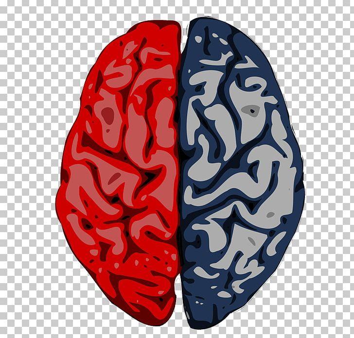 Brain Cerebrum Cerebral Cortex Cerebral Hemisphere Science PNG, Clipart, Blue, Brain, Cerebral Cortex, Cerebral Hemisphere, Cerebrum Free PNG Download
