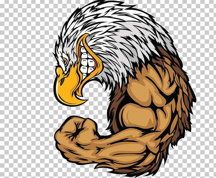 Eagles angry. Bald eagle png clipart