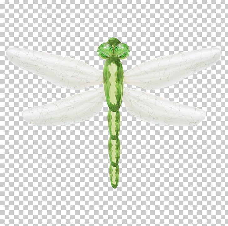 Dragonfly Insect Euclidean Png Clipart Cartoon Dragonfly