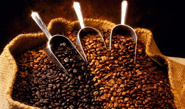 Coffee Bean Espresso Latte Cafe PNG, Clipart, Arabica Coffee, Bean, Bean, Cafe, Caffeine Free PNG Download