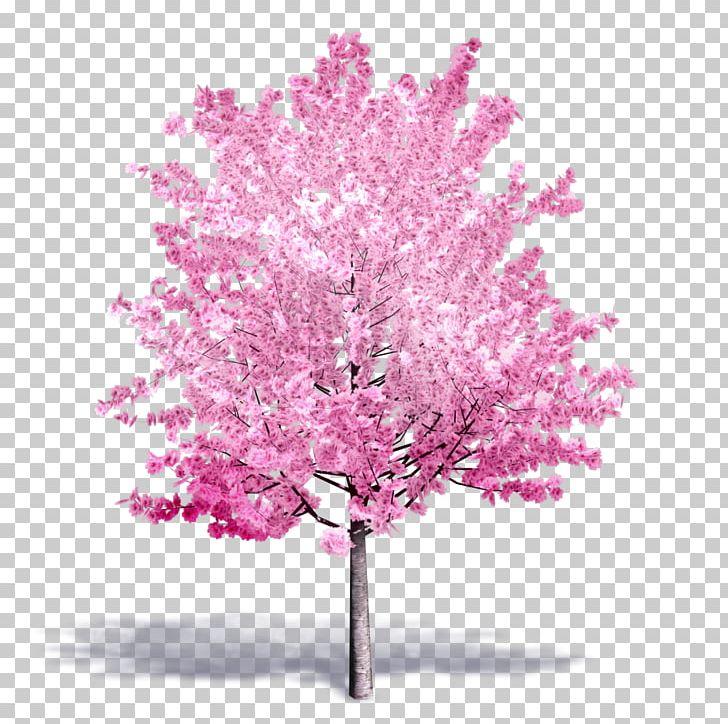 Tree Autodesk Revit Building Information Modeling ArchiCAD  dwg PNG